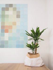 Vaderdag plant