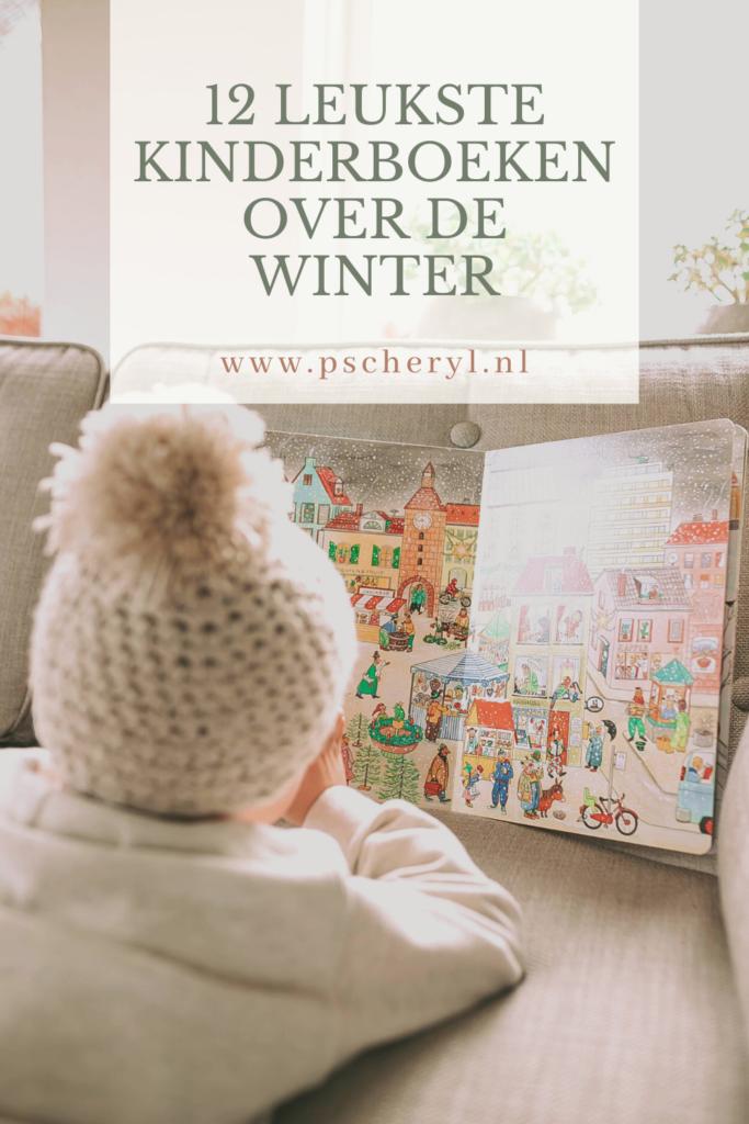 kinderboek over de winter prentenboek zoekboek leesboek