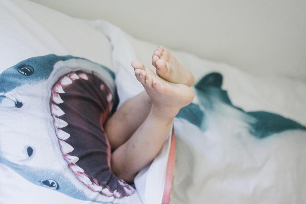 SNURK beddengoed haai dekbedovertrek